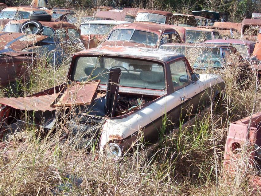 Fords in Texas Salvage Yard - Ford Muscle Forums : Ford Muscle Cars ...