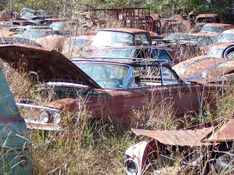 Fords In Texas Salvage Yard Ford Muscle Cars Tech Forum