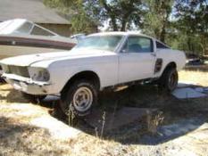 67 Mustang Fastback S Code-12313914b3ma3o53lc8c1eae32b2f85c-1.jpg
