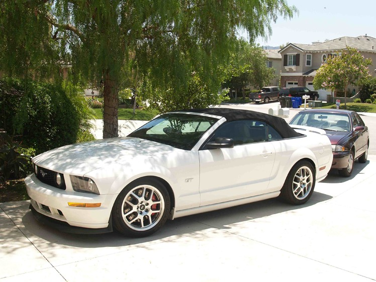 2008 ford mustang gt convertible for sale ford muscle forums ford muscle cars tech forum. Black Bedroom Furniture Sets. Home Design Ideas